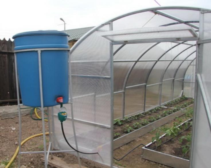 Дождеватель для полива создание микроклимата для растений